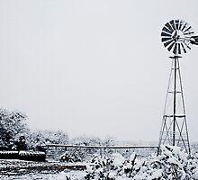 Snow Day by lfsaenz