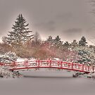Frozen Bridge by DougOlsen