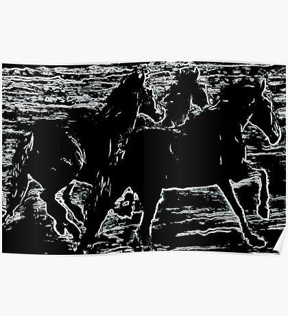 Moonlight Equines Poster