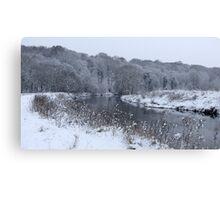 River Darwen, Walton le Dale Canvas Print