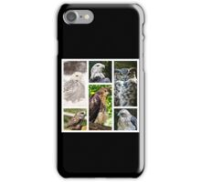birds of prey collection iPhone Case/Skin