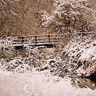 Footbridge In The Snow by Stan Owen