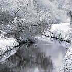 Sankey Brook In Winter by Stan Owen