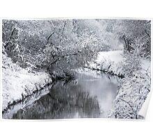Sankey Brook In Winter Poster