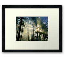 Behold The Light! Framed Print