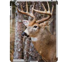 White-Tailed Buck iPad Case/Skin