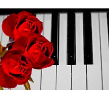 You Are Like Soft Music To My Soul! Photographic Print