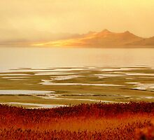 Impressions of Great Salt Lake  by Brian Bo Mei