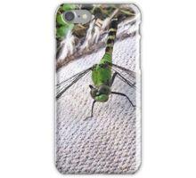 Dragonfly Closeup iPhone Case/Skin