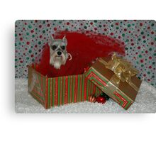 Merry Christmas Annie Canvas Print