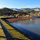 Akaroa. South Island, New Zealand. by Ralph de Zilva