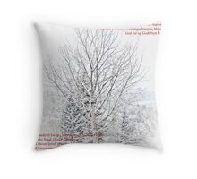 Merry Christmas 2010 & Happy New Year 2011 to All Throw Pillow
