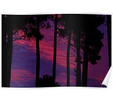 Shades of Violet Sunset Poster