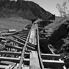 Independence Mine Tracks by Sally Winter