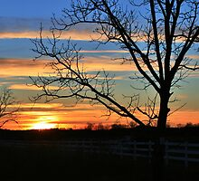 Chilly Sunset in Clarkesville by Chelei