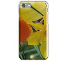 Daffodils of different sizes -  iPhone Case/Skin