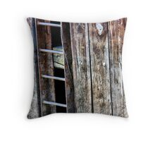 4 Rungs Throw Pillow