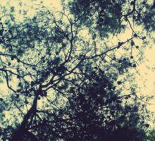 Trees under the sky Sticker
