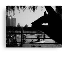 Shadow Fox - Beijing 2006 Canvas Print