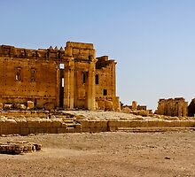 Palmyra before the dessicration in 2015 by MarcW