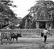 Cambodge - Wat Nokor by Jean-Luc Rollier