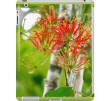 Flowering Queensland Firewheel Tree  iPad Case/Skin
