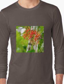Flowering Queensland Firewheel Tree  Long Sleeve T-Shirt