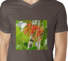 Flowering Queensland Firewheel Tree  Mens V-Neck T-Shirt