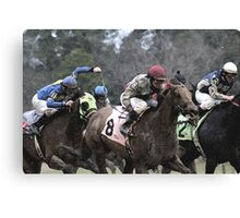 Thoroughbreds 5 Canvas Print