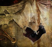 Hiding In Decay by Geraldine (Gezza) Maddrell