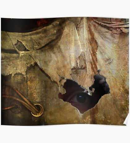 Hiding In Decay Poster