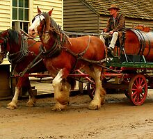 Sovereign Hill by bobby1