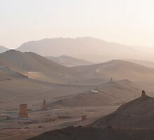 Palmyra ... Valley of the Toombs  by MarcW