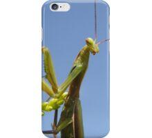 Praying Mantis. Summer Day.  iPhone Case/Skin