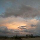 Having a Sunset Surprise by BingoStar