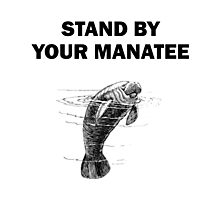 Stand By Your Manatee Photographic Print