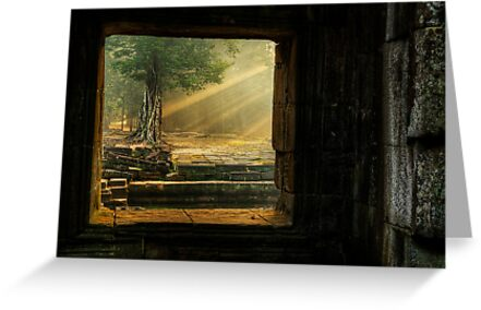Early Mornining Light - Ta Prohm Temple by Anthony and Kelly Rae