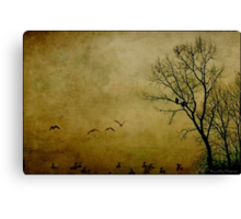 Resting Point Canvas Print
