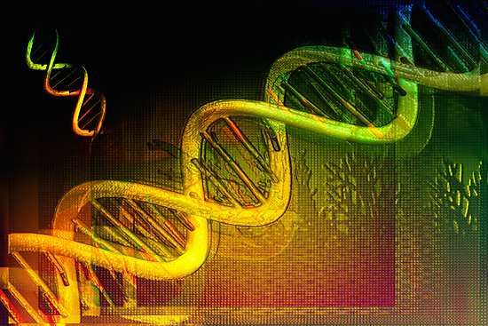 Is DNA a pattern?  Or is it a language? by MedILS