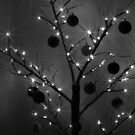 Christmas Silhouette by John Dalkin