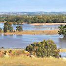 Isolated by Flood, Murrumbidgee. by bazcelt