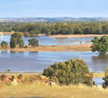 Isolated by Flood, Murrumbidgee. by bazcelt