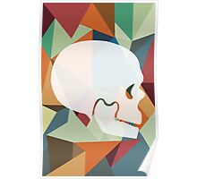 Skull Color Poster