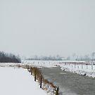Winterly by Els Steutel
