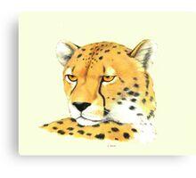 Portrait of a Cheetah Canvas Print