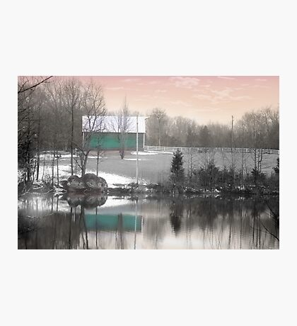 Peacock Farms Photographic Print