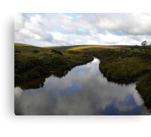 Reflection of Clouds in River Dart Canvas Print