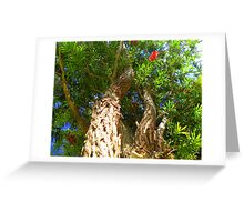 From the bottom of my trunk ... Bottle Brush Greeting Card