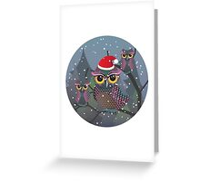 Cute Christmas Owl 2 Greeting Card