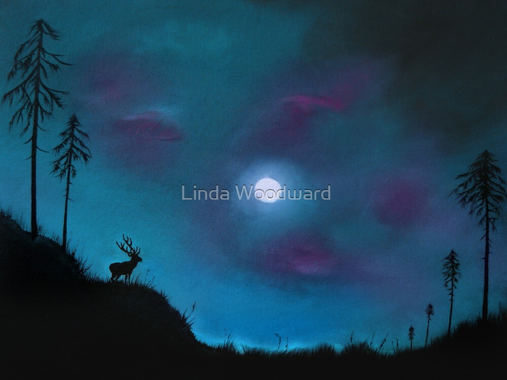 Mystery Over Northern Lights by Linda Woodward